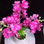 elyaflor fleuriste 74130 Bonneville